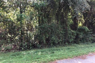 9120 Mockingbird Trail 1