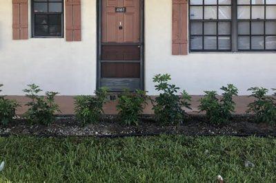 4167 Oak Terrace Drive 1