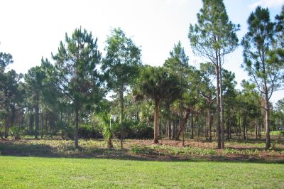 18850 SE Crosswinds Lane #Lot #29 1
