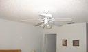 ceiling fan. mst