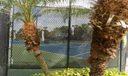 duval tennis courts