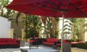 916 red umbrellas