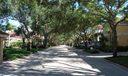 Villa D Este trees