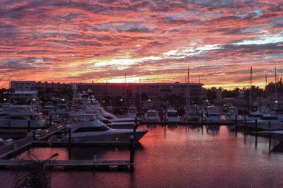 37 Yacht Club Drive #306 1