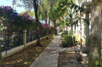 430 Amador Lane #6 1