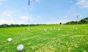 Golf, Golf & More Golf