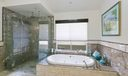 Owner's Shower and Jacuzzi Tub