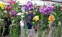 Vibrant Foliage at Open Air market