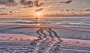 Juno Beach-3