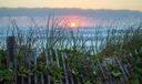 Juno Beach-1