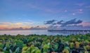 Juno Beach-2