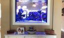 250 gal fish tank