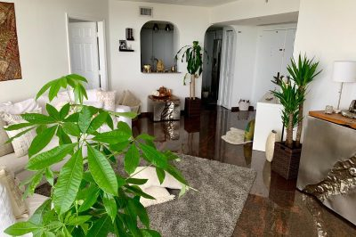 6301 Collins Ave #1606 1