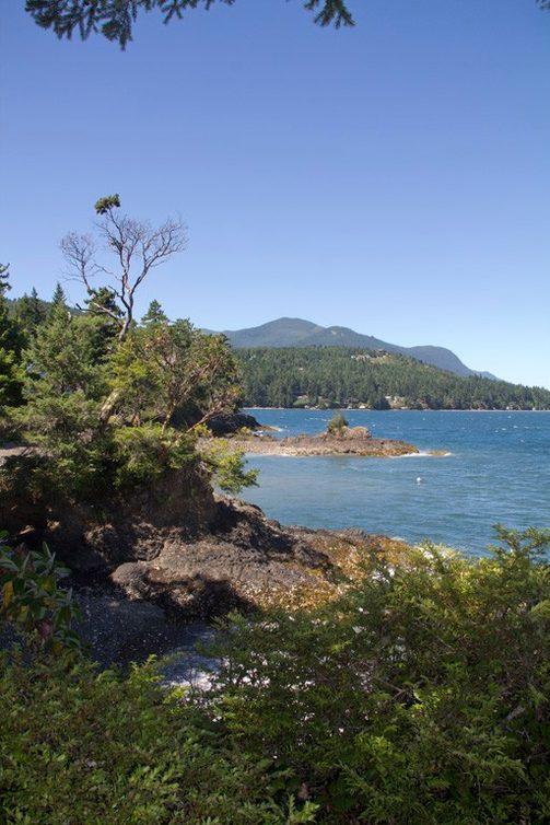 256 Wildwood Shores Photo 20