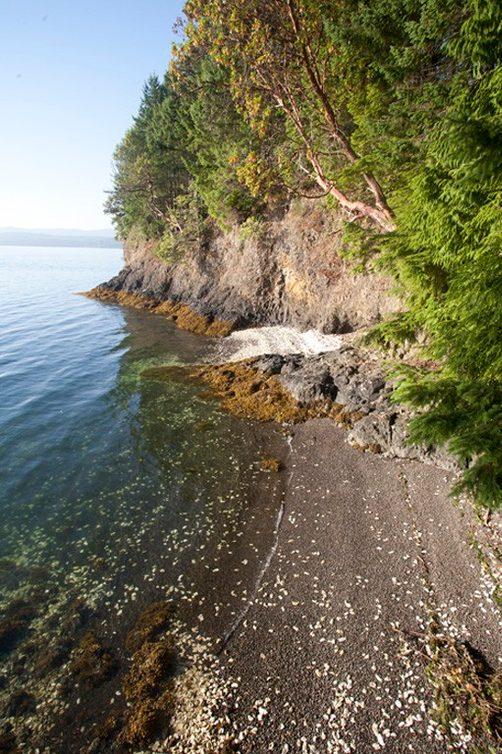 256 Wildwood Shores Photo 22