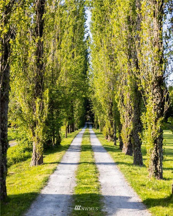 19381 County Line Road Photo 34