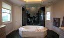 Master whirlpool bath and double-entry shower