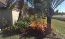 Gorgeous Side yard